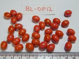 BL-OP-12 Glass Beads